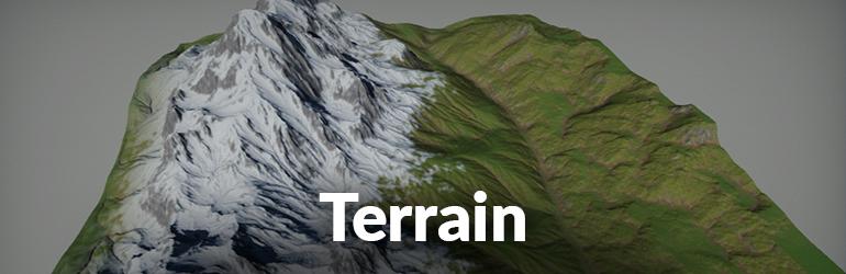 Flax Facts Terrain